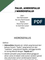 76769223 Hidrosefalus Anensefalus Dan Mikrosefalus New