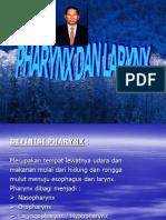 Pharynx & Larynx