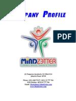 Company Profile Mindzetter 2013