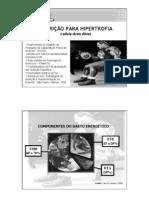 Nutricao Para Hipertrofia