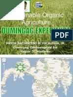 Dumingag Data