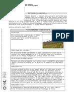 Fichas Escenario Natura2013(6of1)