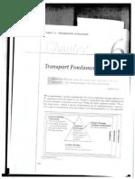 Chapter 6 Transport Fundamentals