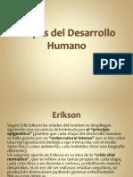 A Etapas Del Desarrollo Humano3130