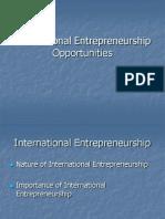 International Entrepreneurship Opportunities