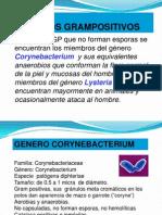 Clase Micro.corynebacterium.2013