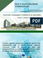 Currículo, pedagogía y calidad de la educación