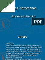Vibrios Colera
