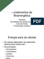 Fundamentos de Bioenergética