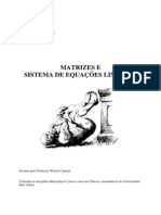 Matrizes e Sistemas de Equações Lineares
