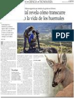 Documental revela como trascurre un año en la vida de los huemules.pdf