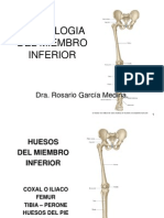 (5) Miembro Inferior-Osteologia.ppt