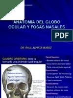 Clase 12 Ojo - Fosas nasales.ppt