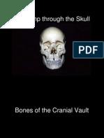 9 a romp through the skull