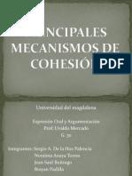 PRINCIPALES MECANISMOS DE COHESIÓN