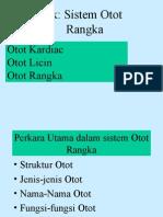 2. Sistem Otot Rangka (Hamstring)