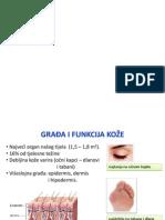 Dermatologija - dermatoterapija