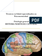 4-Sistema Nervioso Central