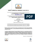 CHEDRAUI Reporte Anual 2012