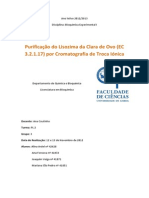 Relatório Troca Ionica FINAL