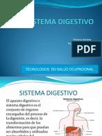 Diapositivas Del Sistema Digestivo