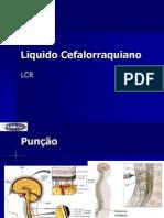 Liquido Cefalorraquiano