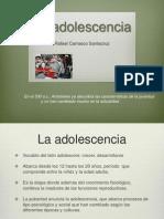 Curso intersemestral Adolescencia