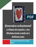 ¿Biomarcadores cardiopulmonares? La influencia del propietario y otras dificultades durante el estudio de la dirofilariosis canina. Elena Carretón