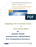 A Project Report on Turbulent Flows