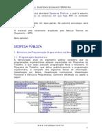 Despesa Pública - Parte I(gustavo)