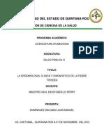 Universidad Del Estado de Quintana Roo