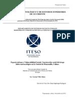 Protocolo de Investigación_ Lorena Villa Jaime_ITESO