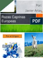 razas europeas