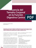 cv_33_30-37_Influencia del Tamaño Corporal en la Función Digestiva Canina