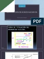 clase 2. IDENTIFICACIÓN DE ACIDOS NUCLEICOS