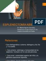 Esplenectomía