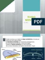 Clase 18 - Tejido Nervioso