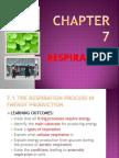 75217422 Respiration Chapter 7 Biology Form 4
