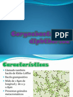 Corynebacterium diphtheriae.pptx