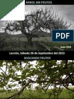 Lección 13 - El árbol sin frutos