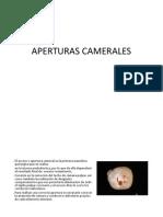 APERTURAS CAMERALES
