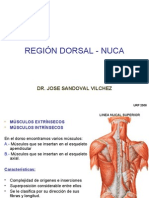 Region Dorsal y Nuca - Dr. Sandoval