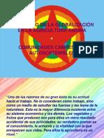 Impacto de La Globalizacion El Agricultura Andina