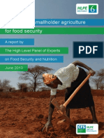 HLPE (2013) - Investing in Smallholder Agriculture for Food Security