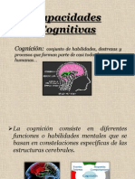 Capacidades Cognitivas