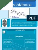 carbohidratos_1