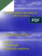 Autodepuração Natural em Cursos D'água