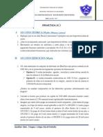 1_ PRÁCTICA -II_2013.pdf