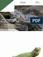 Manual Ilustrado Fauna Amenazada