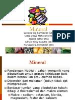 Vitamin Dan Mineralpresentation ,